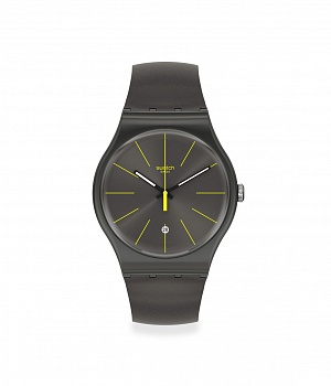 Swatch Essentially